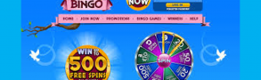 Dove Bingo Casino Review